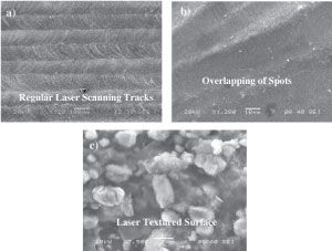 Characteristics-of-laser-textured-silicon-surface-and-effect-of-mud-adhesion-on-hydrophobicity_300