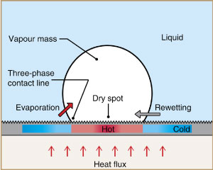 Critical-heat-flux-maxima-during-boiling-crisis-on-textured-surfaces_300