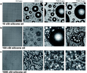 How-droplets-nucleate-and-grow-on-liquids-and-liquid-impregnated-surfaces_300